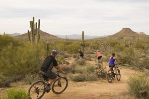 Phx MTB Group