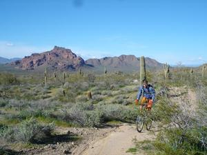 Single Track Mountain Biking in Phoenix