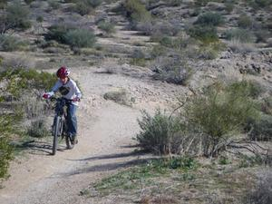 Sonoran Desert Single Track